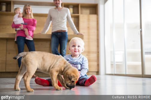 Conseils pour apprendre à votre enfant à savoir bien se comporter en face d'un chien
