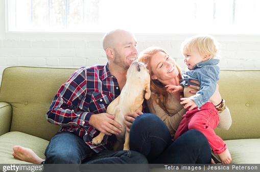 C'est en apprenant à votre enfant la notion de respect du chien et de respect de son espace le plus tôt possible que vous éviterez les accidents.